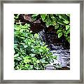 Hidden Waterfall Framed Print