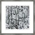 Hillside Pattern  Framed Print