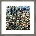 Homage To Monet Framed Print by Todd Sherlock
