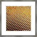 Honey Bee Eye Framed Print