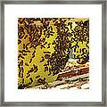 Honey Bees On A Beehive And Honeycombs Framed Print