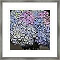 Hydrangea Boquet Framed Print