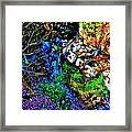 Hyper Grafton 10 Framed Print