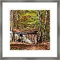 In Autumn Woods Framed Print by Steve Harrington