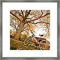 In Search Of Fall Colors Framed Print