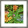 In The Garden Of Dreams Framed Print
