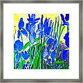 In The Iris Bed Framed Print