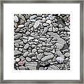 Intertidal Shore Framed Print