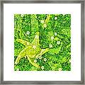 Irish Moss With A Twist Framed Print