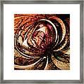 Joy In Sepia Framed Print