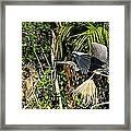 Jungle Flight Framed Print