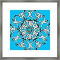 Kaleidoscoot Framed Print