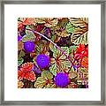 Lavender Berry Framed Print