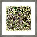 Lavish Leaves 6 Framed Print