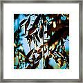 Leaves And Sky Framed Print