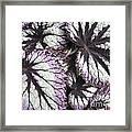 Leaves Framed Print by Ann Powell