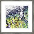 Leaves On A Tree Framed Print