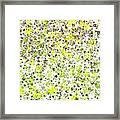Lemon Lime Abstract Framed Print