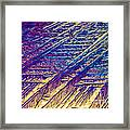 Light Micrograph Of Zalcitabine Ddc Framed Print