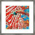 Lion Fish Face Framed Print