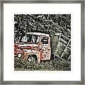 Load Of Roots Framed Print