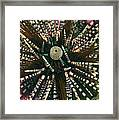 Long Spined Sea Urchin Framed Print