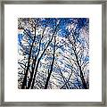 Looking Up When You're Down Framed Print