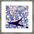 Lung Thick Section Framed Print