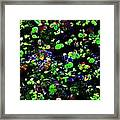 Macro Marsh Framed Print