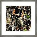 Man In The Wilderness Framed Print