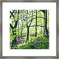 Marsh Marigolds And Bluebells Framed Print