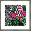 Mom's Pink Geranium  Framed Print