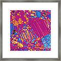 Moon Rock, Transmitted Light Micrograph Framed Print