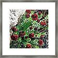 Mountain Blooms Framed Print