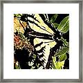 Moveonart Yellowbutterflyfriend Framed Print