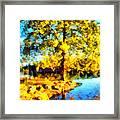 My Golden Impression Framed Print