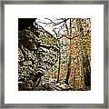 My Rock My Shelter Framed Print