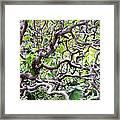 Natural Abstract 3 Framed Print