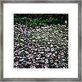 Natural Carpet Framed Print