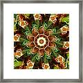 Natural Pinwheel Framed Print
