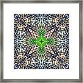 Nature Mandala Framed Print