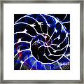 Nautilus Shell Ying And Yang - Electric - V1 - Blue Framed Print by Wingsdomain Art and Photography