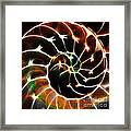 Nautilus Shell Ying And Yang - Electric - V1 - Orange Framed Print