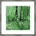 Neon Forest Framed Print