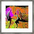 Night Of The Rhino Framed Print