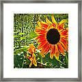 Noontime Sunflowers Framed Print