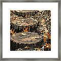 Oak Creek Steps Framed Print