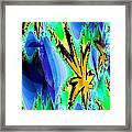 Ocean Stars Framed Print