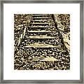Old Dried Leaves Framed Print