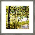 On The Shore Of The Loch Achray. Scotland Framed Print